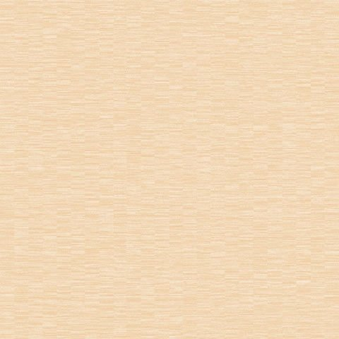 Papel de parede Choice premier (Liso) - Cód. CP 9092