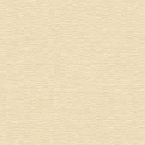 Papel de parede Choice premier (Liso) - Cód. CP 9093