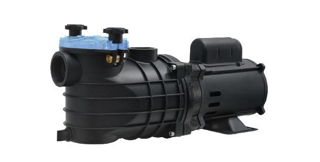 Bomba para Piscina Schneider Monofásica EKO 1CV - 127/220V