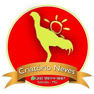 PINTINHOS DE ÍNDIO GIGANTE (30 UNIDADES)