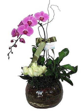 Mix Orquídeas, rosas e plantas