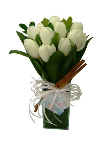 Tulips love