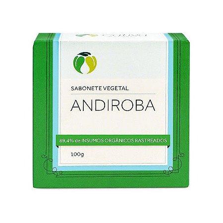 CATIVA NATUREZA SABONETE VEGETAL DE ANDIROBA ORGÂNICO 100g