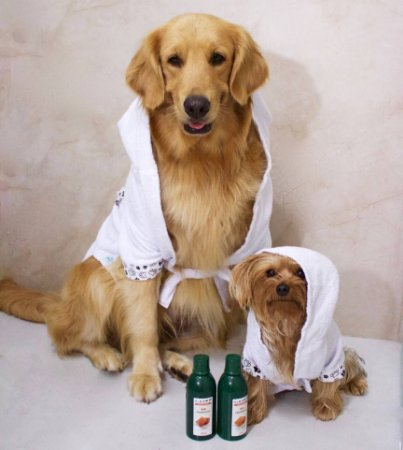 Roupão para Pets - Banho Zen
