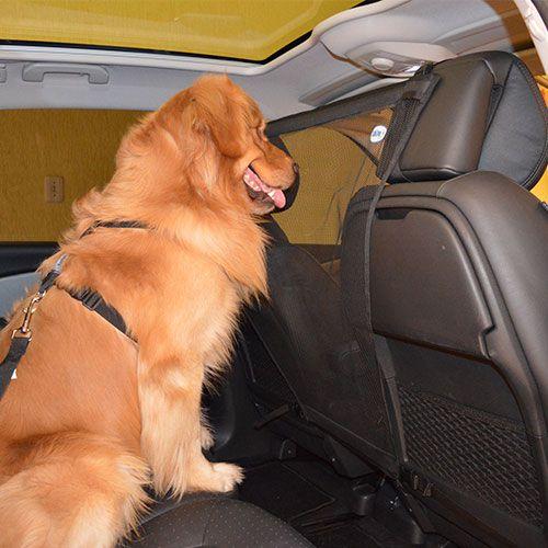 Tela de Proteção para Carro - Pet Guard