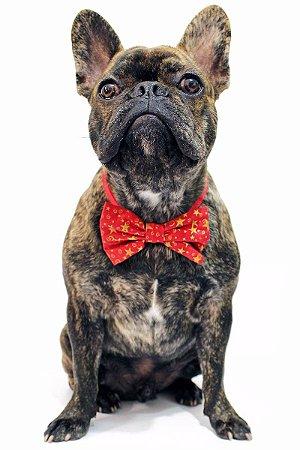 Lacinho ou Gravata Borboleta de Natal - Estrela Dourada