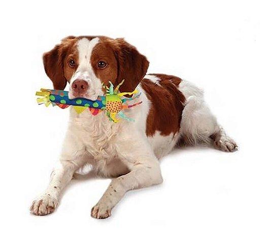 Bastão Geladinho para Cães
