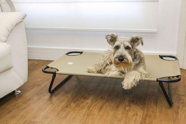 Cama Suspensa para Cães até 60kg - Grande