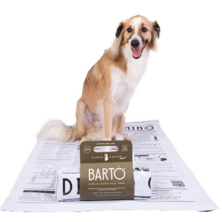 Tapete Higiênico para Cachorro Lavável e Sustentável - Diário Canino Grande