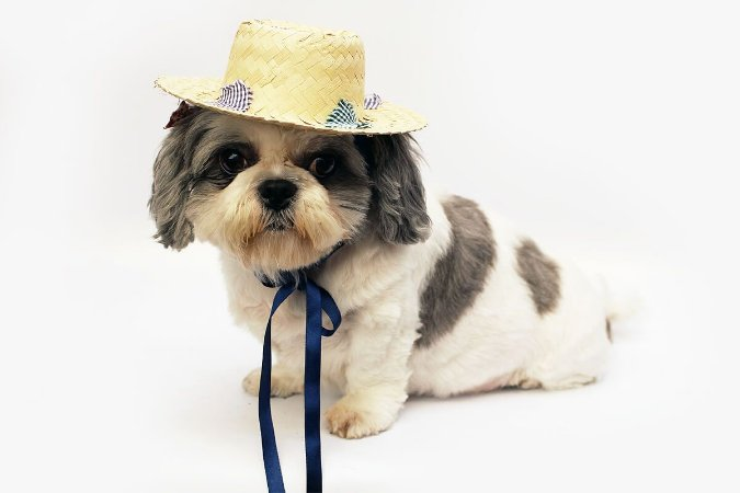 Chapéu de Palha - Caipira