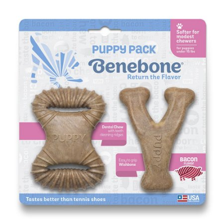 Mordedor Benebone Puppy Bacon - Wishbone e Dental Chew