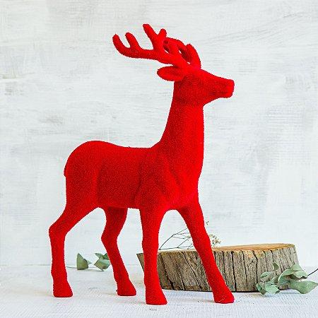 Rena Vermelha