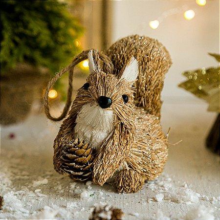 Esquilo com Pinha