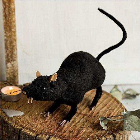 Rato Decorativo