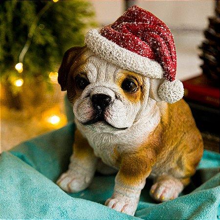 Cachorro Bulldog com Gorro de Natal