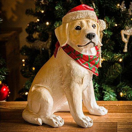 Cachorrinho Labrador Sentado com Gorro de Natal