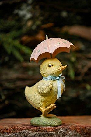Pato mais Fofo do Mundo
