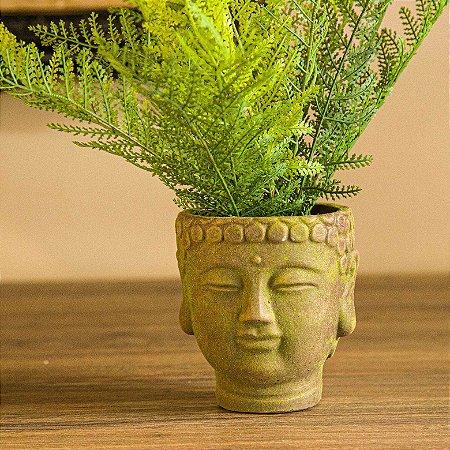 Buda Arranjo Cedro Real