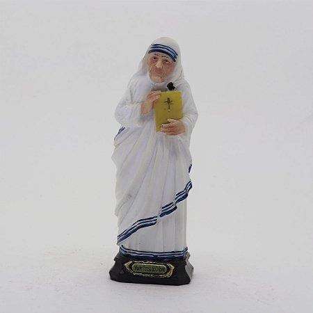 Santa Teresa de Calcutá 9 cm (8190)