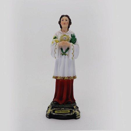 São Tarcísio 20,5 cm (8013)