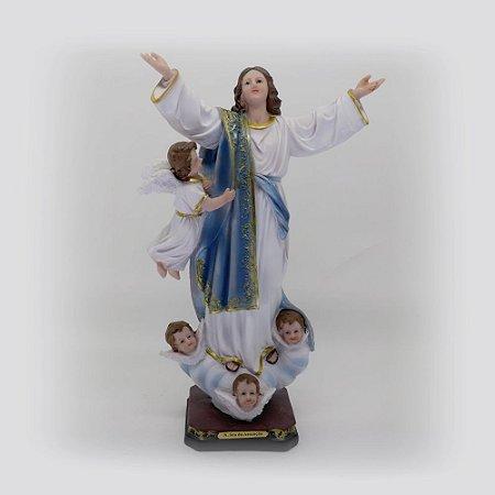 Nossa Senhora da Assunção 29 cm (7471)