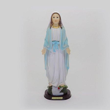 Nossa Senhora das Graças 31 cm (7870)