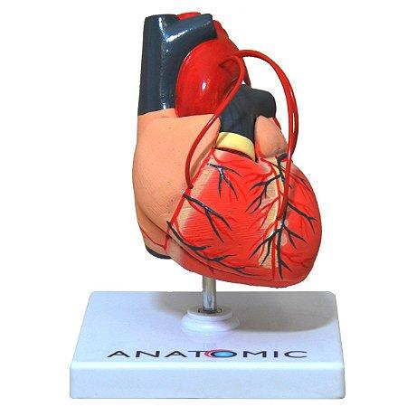 Coração com Pontagem Coronária