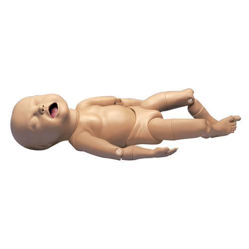 Simulador Modelo de feto com articulações móveis - 3B Scientific