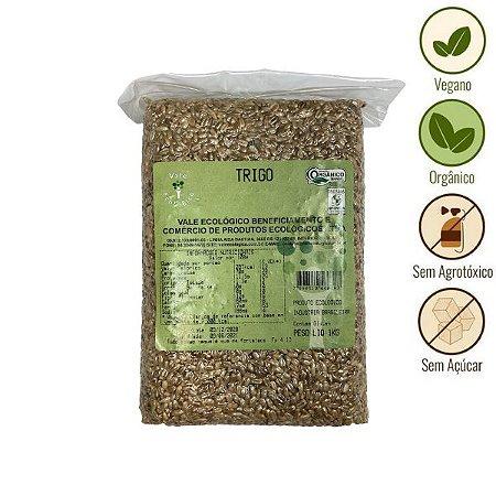 Trigo Orgânico Vale Ecológico (1kg)