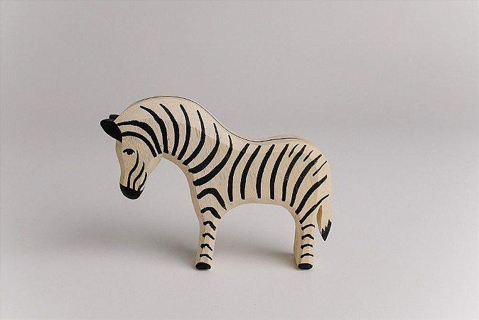 Zebra adulta