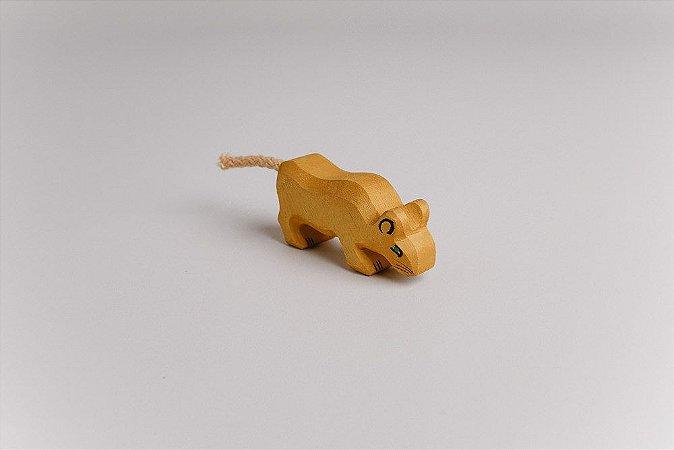 Leão filhote bebendo (leãozinho)