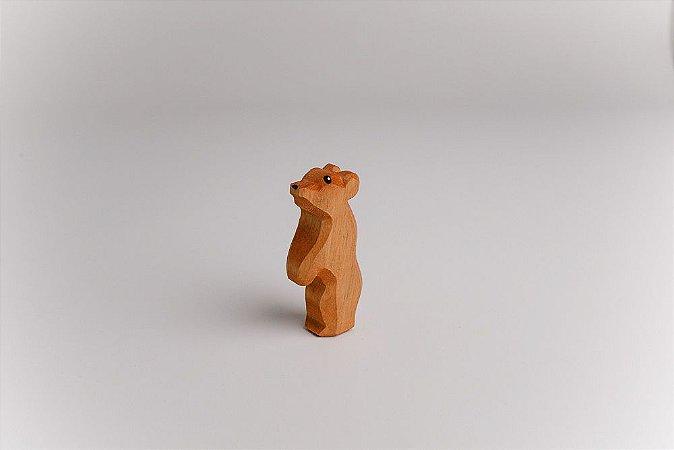 Urso marrom filhote em pé
