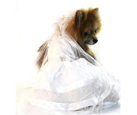 Fantasia Vestido de Noiva para Pet tam PP