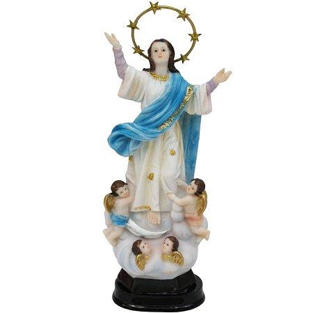 Nossa Senhora Da Assunção 20 CM
