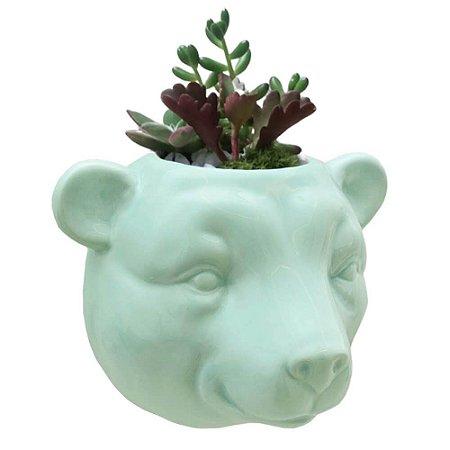 Vaso de Parede Cachepot Urso Verde Cerâmica