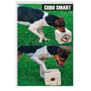 Brinquedo Cubo Smart Madeira Cão Sentinela