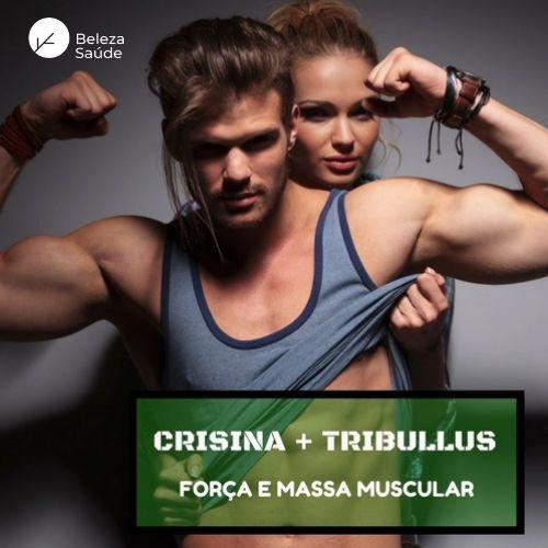 Crisina 250mg + Tribullus Terrestris 750mg : Massa Muscular, Aumento Desempenho Homem