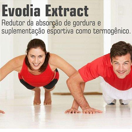Evodia Extrato Seco 30mg : 60 Cápsulas
