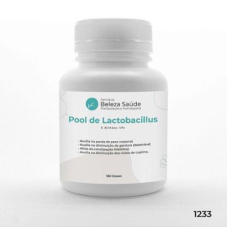 Pool De Lactobacillus Emagrecedor 6 Bilhões Ufc - 180 doses