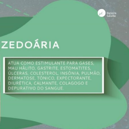 Zedoária 500mg : ( Curcuma Zedoaria ) 60 Cápsulas