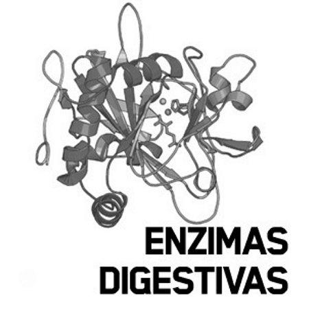 Protease + Lipase + Pancreatina + Bromelina : 60 Cápsulas