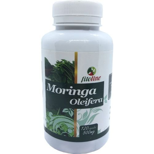 Moringa Oleifera 500mg 120 Cápsulas