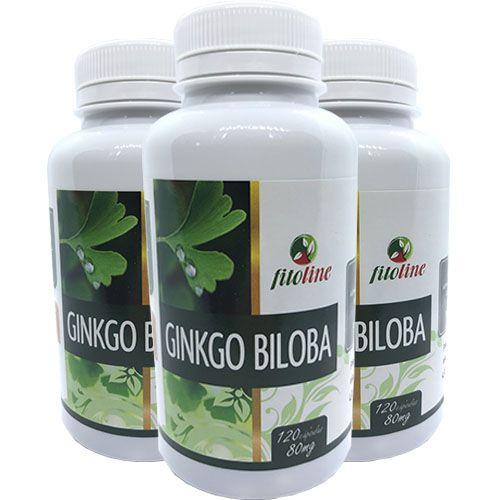 Ginkgo Biloba Super Concentrado 500mg 120 Cápsulas (Kit 3 unidades)