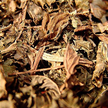CHÁ CHAPÉU DE COURO 100G (Echinodorus Macrophyllus, GRANEL)