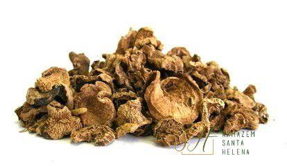 GARRA DO DIABO 50G (Harpagophytum Procumbens)