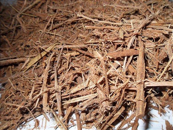 Jagube - Banisteriopsis Caapi - 500 gramas