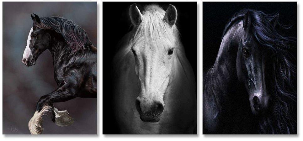 Kit Quadros Decorativos Decoração Cavalos