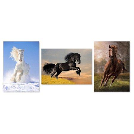 Kit Quadros Decorativos Cavalo