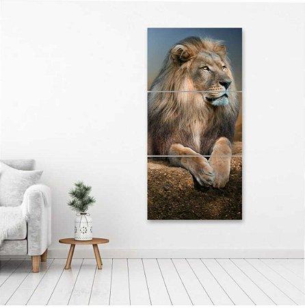 Kit 3 Quadros Mosaico Leão Natureza Rei Da Selva Lion