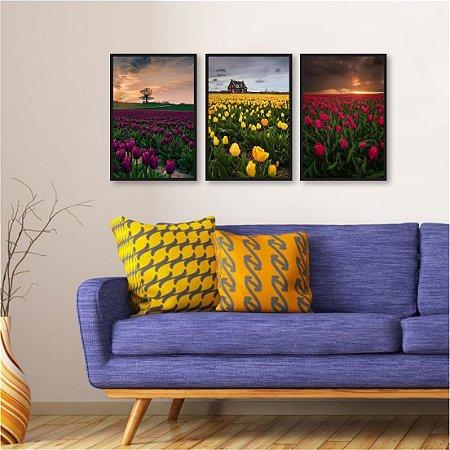 Kit 3 quadros Tulipas Amarelas Lilas Rosa Vermelha Por do sol Fazenda Campo Plantação Tulipa